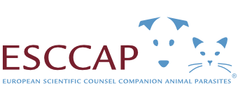 ESCCAP Schweiz